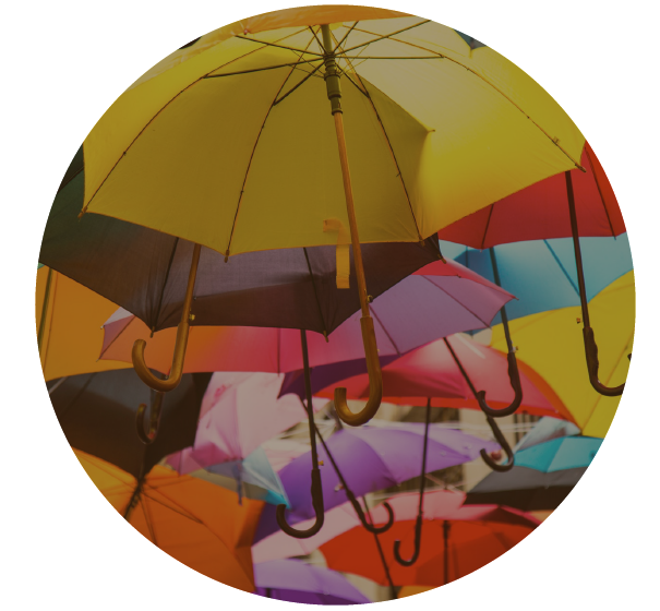 Let Trophy Insurance help you with your personal umbrella insurance policies.